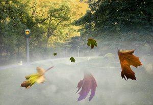 Image of Light Painting Autumnal Equinox