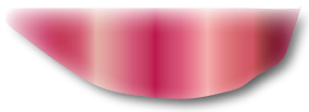 Left Top Curtain