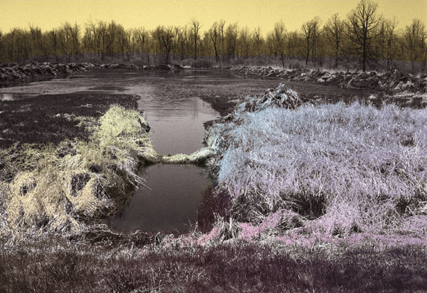 Image of Light Painting Watermarsh
